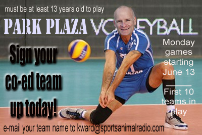Park Plaza Co-Ed Volleyball